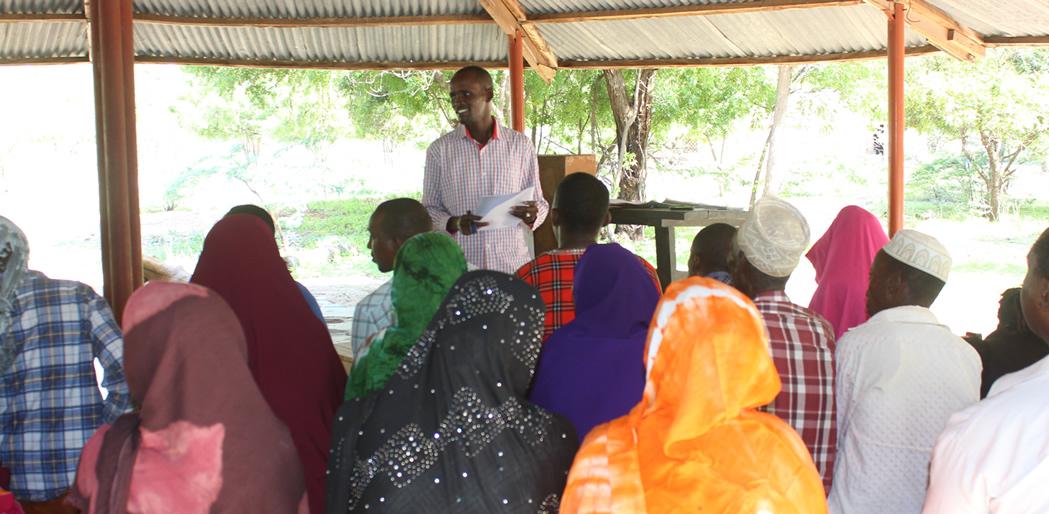 Programme implementation strategies
